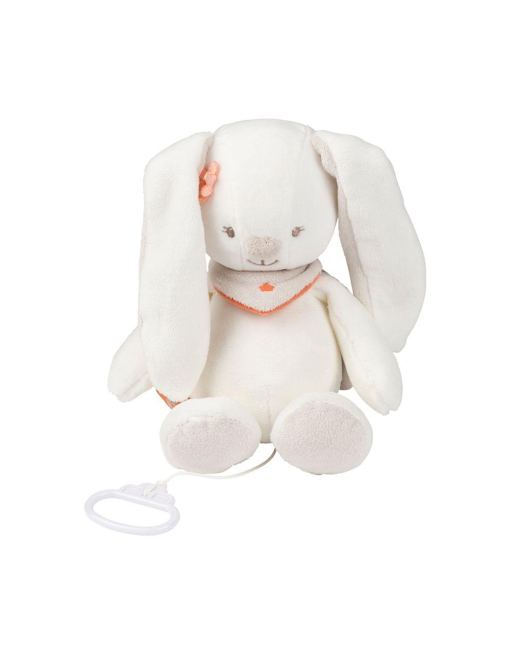 Nattou - minha caixa de música de coelho - Nattou