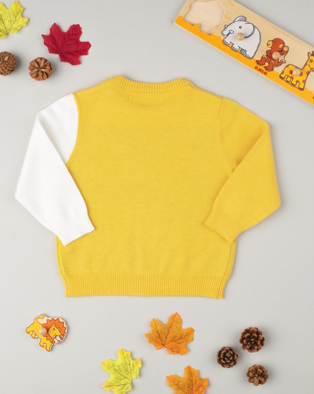 "Suéter tricot masculino ""leone"" - Prénatal"
